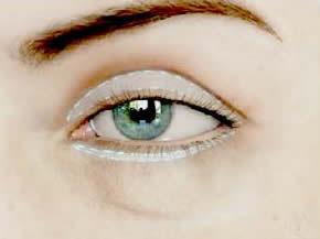 eyelid orbit